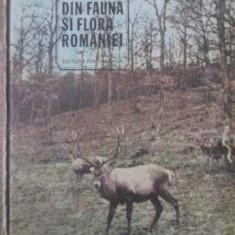 Din Fauna Si Flora Romaniei - Ion Simionescu, 389935 - Carti Agronomie
