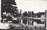Bnk cp Campina - Lacul din parc - circulata, Printata