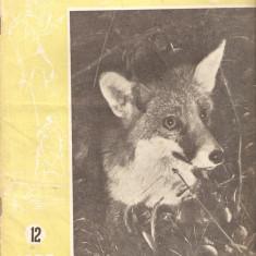 Revista Vinatorul si pescarul sportiv nr.12-1957 - Revista barbati