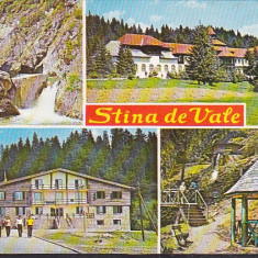 Bnk cp Stana de Vale - Vedere - circulata - marca fixa - Carte Postala Crisana dupa 1918, Printata
