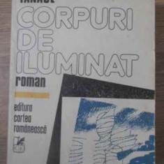 Corpuri De Iluminat - Stelian Tanase, 390161 - Roman