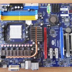 Placa de baza Sapphire PC-AM2RS790G video onboard socket AM2., Pentru AMD, DDR2