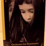 ORCHESTRA LUI DUMNEZEU, 2012 - Roman