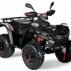 ATV Linhai DragonFly 300 4x4 S 2016 - cadou cutie spate