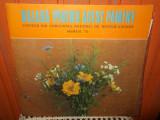 -Y- BALADA PENTRU ACEST PAMANT - MUZICA USOARA MAMAIA 75     DISC VINIL LP