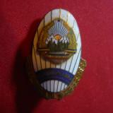Insigna veche Academia Militara, metal si email, h= 4, 2 cm