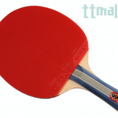 999 Control Topspin - Paleta ping pong Nespecificat