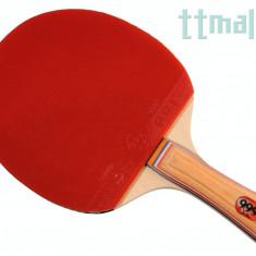 999 Control Block - Paleta ping pong Nespecificat