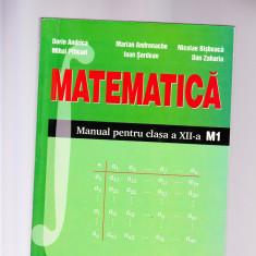 MATEMATICA MANUAL CLASA 12 -M1 - Manual scolar