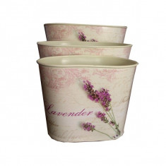 Set 3 vaze din plastic ovale - Vaza si suport flori