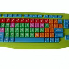 Digitex Tastatura Digittex copii