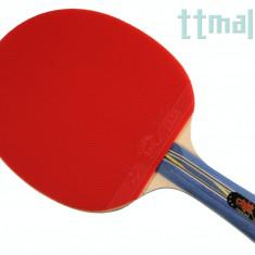 Friendship 1 - Paleta ping pong