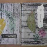 Fitotehnie Vol.1-2 - N. Zamfirescu, V. Velican, N. Saulescu, 390695 - Carti Agronomie