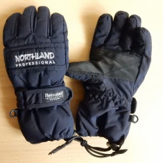 Manusi ski Northland Professional Thinsulate Insulation 40 gram; marime S copii - Echipament ski