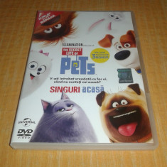 Singuri acasa - The secret life of pets - desen animat dublat romana - Film animatie Altele, DVD