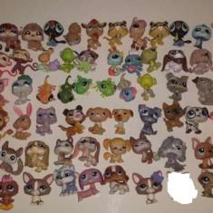 Lps, lot littlest pet shop figurine rare retrase! 75 animale - Figurina Animale Hasbro