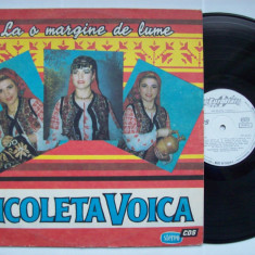 Disc vinil NICOLETA VOICA - La o margine de lume (Eurostar ST - CS 0230) - Muzica Populara Altele