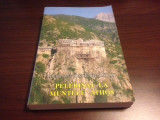 ARHIM. IOANICHIE BĂLAN, PELERINAJ LA MUNTELE ATHOS