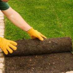 Rulou gazon - Gazon natural