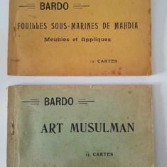 Lot 2 albume carti postale /vederi antice de la muzeul Bardo Franta, 1900-1920, Necirculata, Printata