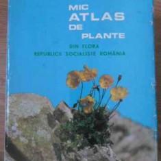 Mic Atlas De Plante Din Flora Republicii Socialiste Romani - I. Todor, 390888 - Carti Agronomie