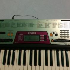 Yamaha-PSR-172