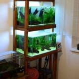 Raft acvarii + accesorii