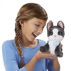 Jucarie de plus Catelusul Frankie FurReal Friends B3003 Hasbro