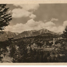 CPI (B8041) CARTE POSTALA - PREDEAL. VEDERE SPRE BUCEGI, RPR - Carte Postala Transilvania dupa 1918, Necirculata, Fotografie