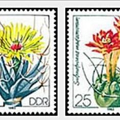 DDR 1983 - cactusi, serie neuzata