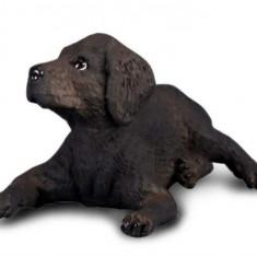 Labrador Retriever Pui - Figurina Animale