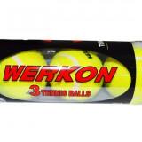 Minge tenis de camp - Set 3