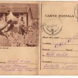 CPI (B8073) CARTE POSTALA - CRESTEREA PASARILOR DE RASA, GAINI