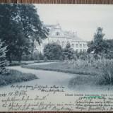 Timisoara parcul