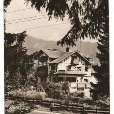 CPI (B8097) CARTE POSTALA - TIMISUL DE SUS - Carte Postala Transilvania dupa 1918, Necirculata, Fotografie