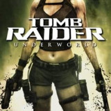 Tomb Raider Underworld Nintendo Wii