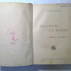 Petru Neagoe - Drumuri cu popas