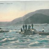 3738 - ORSOVA - Double old postcard - used - 1907