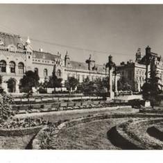 CPI (B8094) CARTE POSTALA - ORADEA. PIATA VICTORIEI - Carte Postala Crisana dupa 1918, Necirculata, Fotografie