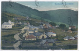 2275 - Bucovina, Suceava, IACOBENI - old postcard - used, Circulata, Printata