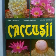 S. Copacescu, s.a. - Cactusii