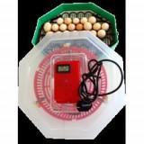 Incubator electric CLEO 5 D.T.