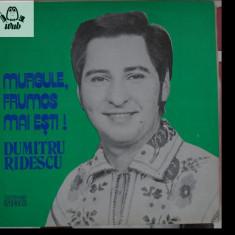 Dumitru Ridescu, Murgule, frumos mai esti!, disc vinil/vinyl Electrecord