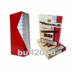 2 x tigari de foi Pegasus 110g tutun + tuburi, filtre Marlboro cu carbon
