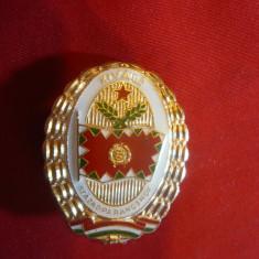 Insigna pt.conducere Academia Militara Ungaria, metal si email, h= 4 cm