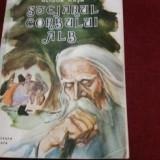 GLIGOR HASA - STEJARUL CORBULUI ALB - Carte de povesti