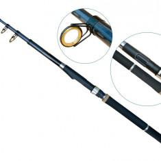 Lanseta fibra de carbon Wizard 3 metri