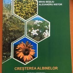CRESTEREA ALBINELOR -