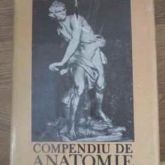 Compendiu De Anatomie - Mircea Ifrim Gheorghe Niculescu ,391407