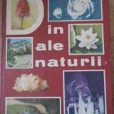 Din Ale Naturii - Ion Simionescu, 391833 - Carti Agronomie